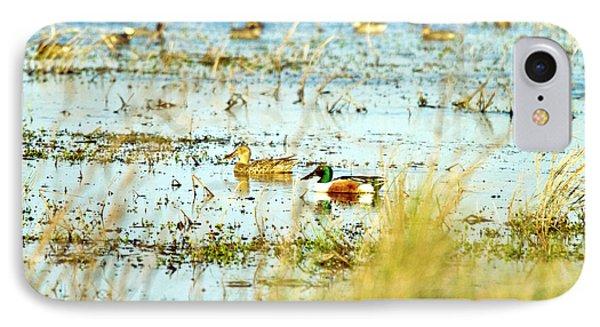 Sitting Ducks Phone Case by Scott Pellegrin