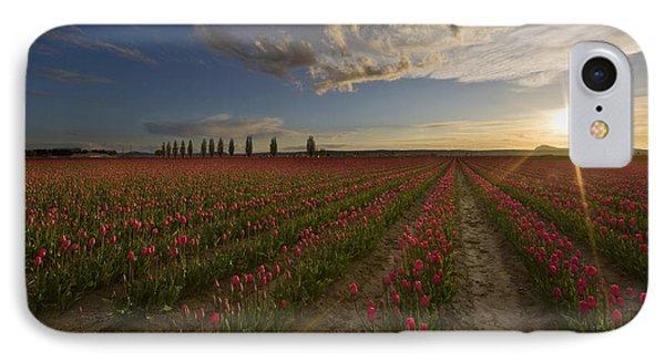 Skagit Tulip Fields Sunset IPhone Case by Mike Reid