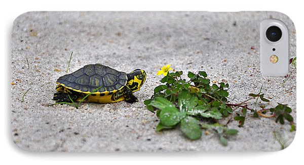 Slider And Sorrel In Sand IPhone Case by Al Powell Photography USA