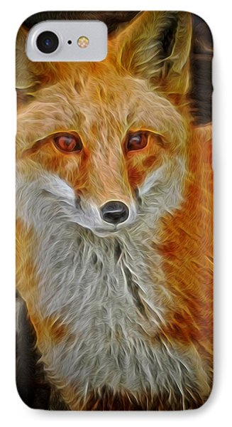 Sly Fox 2 IPhone Case by Ernie Echols