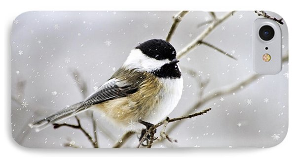 Snowy Chickadee Bird IPhone 7 Case by Christina Rollo