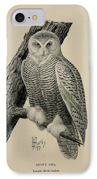 Snowy Owl IPhone Case by Philip Ralley