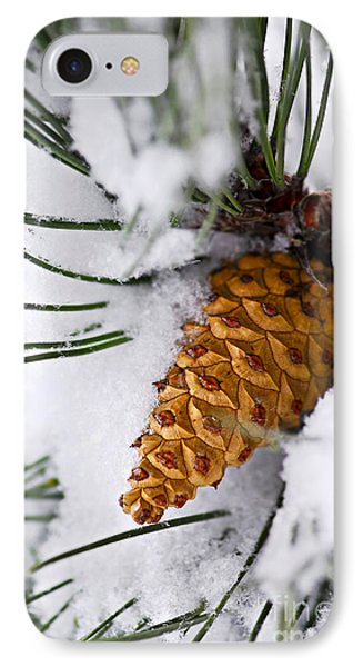 Snowy Pine Cone Phone Case by Elena Elisseeva