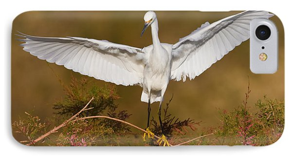 Snowy Wingspread Phone Case by Bryan Keil