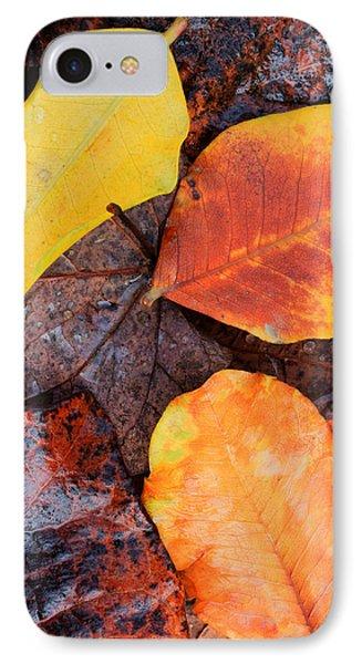 So Cal Autumn Phone Case by Heidi Smith