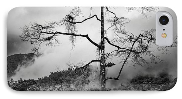 Solitary Tree Phone Case by Dave Bowman