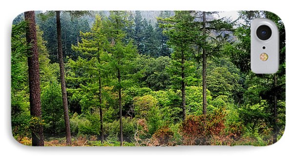 Somewhere In The Forest Over Upper Lake. Glendalough. Ireland Phone Case by Jenny Rainbow
