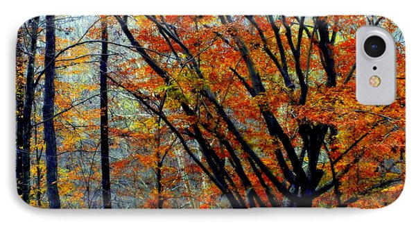 Song Of Autumn Phone Case by Karen Wiles