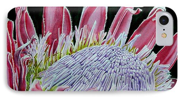 South African Flower Protea Painting Phone Case by Sylvie Heasman