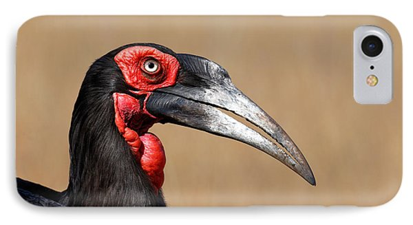 Southern Ground Hornbill Portrait Side View IPhone Case by Johan Swanepoel