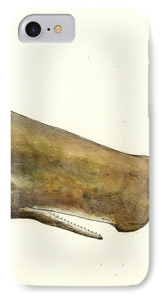 Sperm Whale First Part IPhone Case by Juan  Bosco