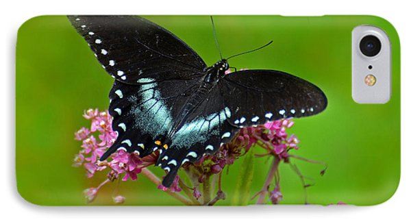 IPhone Case featuring the photograph Spicebush Swallowtail by Rodney Campbell