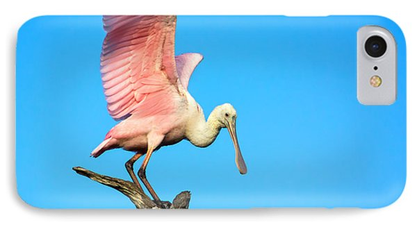 Spoonbill Flight IPhone Case by Mark Andrew Thomas
