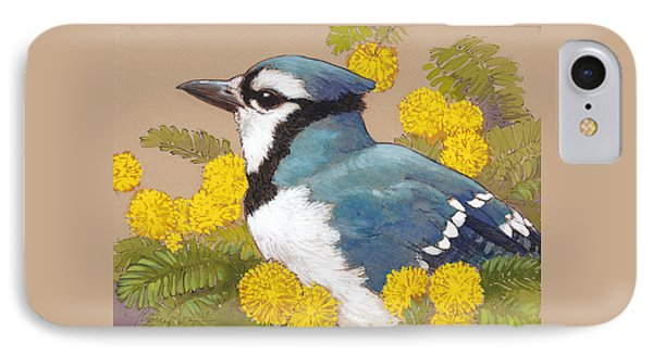 Spring Blue Jay 4 IPhone Case by Tracie Thompson