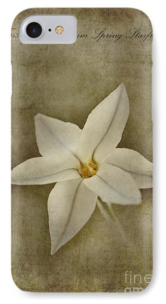 Spring Starflower IPhone Case by John Edwards