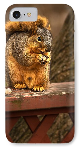 Squirrel Eating A Peanut Phone Case by  Onyonet  Photo Studios