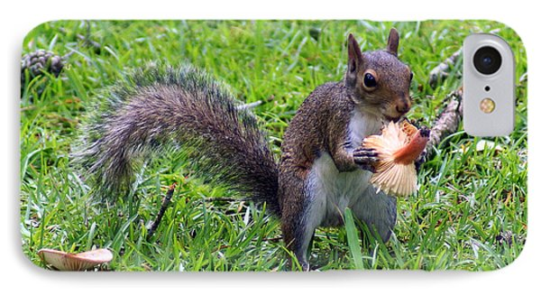 Squirrel Eats Mushroom Phone Case by Kim Pate