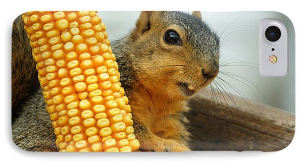 Squirrel Phone Case by Lori Tordsen