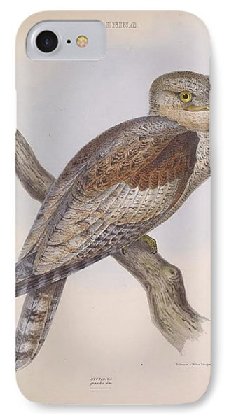 Steatorninae Owl IPhone Case by Philip Ralley