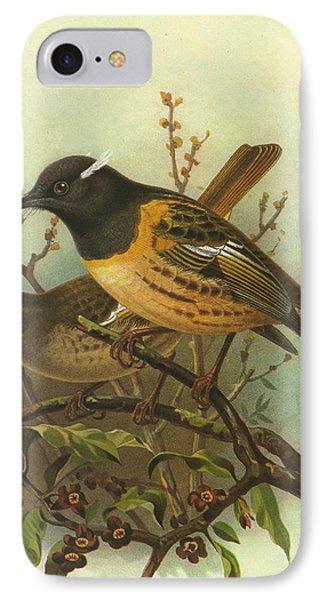 Stitchbird IPhone Case by J G Keulemans
