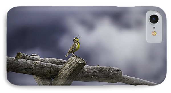 Stormy Weather And A Sweet Song IPhone Case by Thomas Young