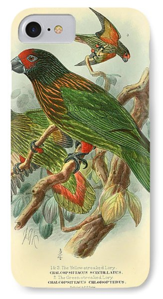 Streaked Lory IPhone Case by J G Keulemans