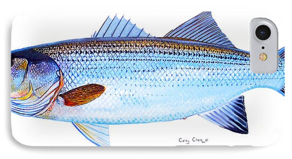 Striped Bass IPhone Case by Carey Chen
