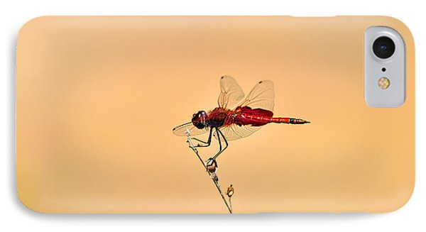 Stunning Saddlebags Phone Case by Al Powell Photography USA