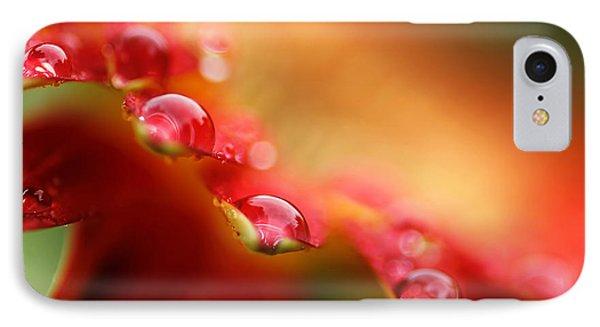 Summer Jewels IPhone Case by Darren Fisher