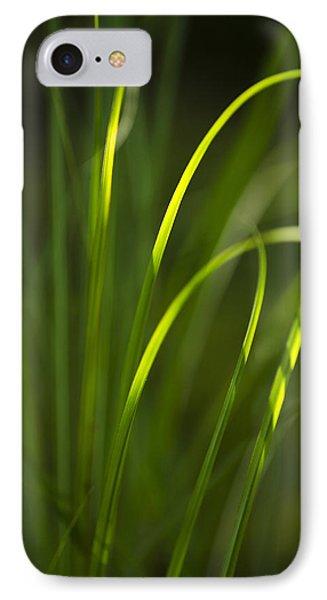 Sun-kissed Grass Phone Case by Christina Rollo