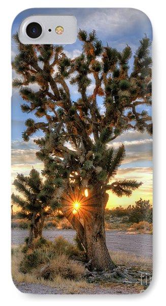 Sun Rays Through A Joshua Tree Phone Case by Eddie Yerkish