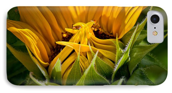 Sunflower IPhone Case by Bill Wakeley