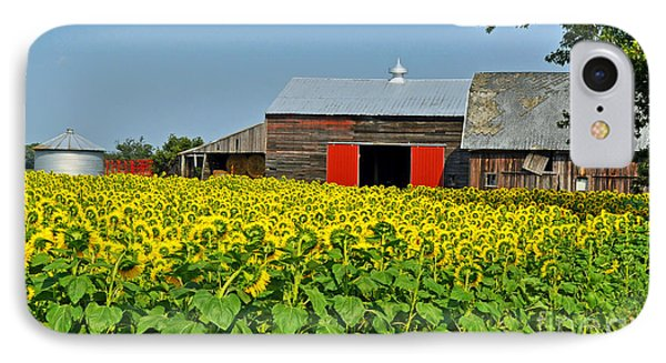 IPhone Case featuring the photograph Sunflower Farm by Rodney Campbell
