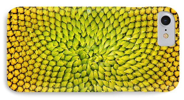 Sunflower Middle  IPhone Case by Tim Gainey