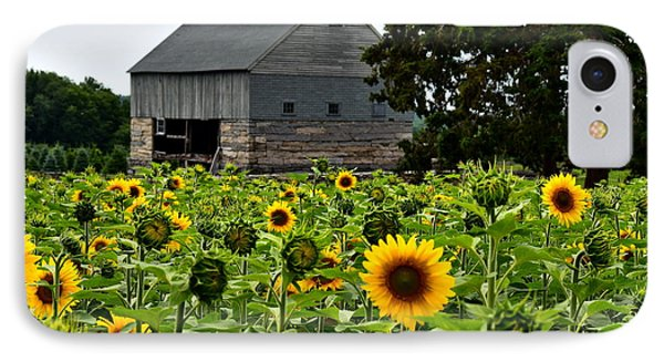 Sunflowers IPhone Case by Brian Mooney