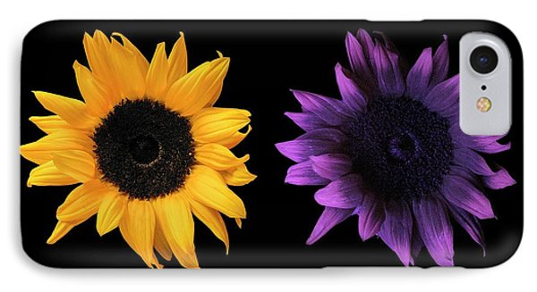 Sunflowers In Uv And Daylight IPhone Case by Science Photo Library