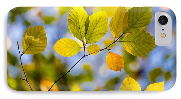 Sunlit Autumn Leaves Phone Case by Natalie Kinnear