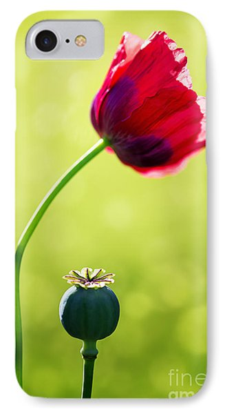 Sunlit Poppy IPhone Case by Natalie Kinnear