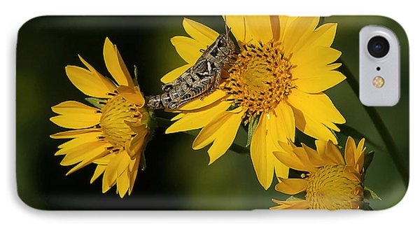 Sunny Hopper IPhone Case by Ernie Echols