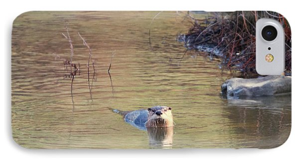 Sunrise Otter IPhone 7 Case by Mike Dawson