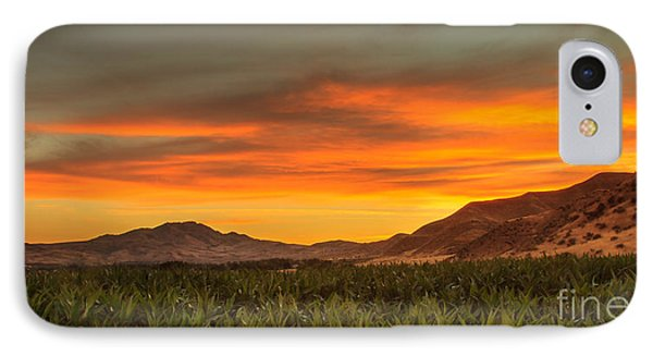 Sunrise Over A Corn Field IPhone Case by Robert Bales