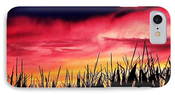 Sunset 365 62 Phone Case by Tina M Wenger