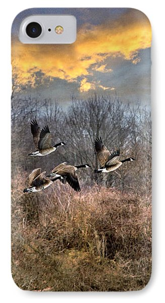 Sunset Geese IPhone 7 Case by Christina Rollo