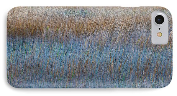 Sunset Marsh In Blue And Gold Phone Case by Jo Ann Tomaselli