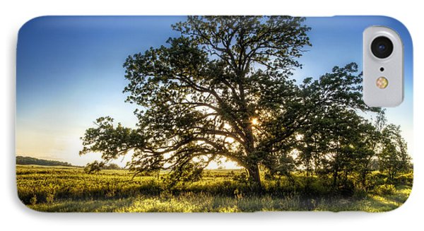Sunset Oak IPhone Case by Scott Norris