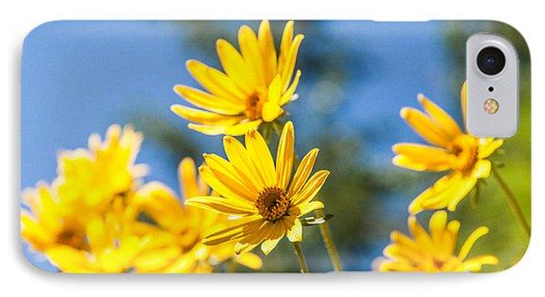 Sunshine IPhone Case by Chad Dutson