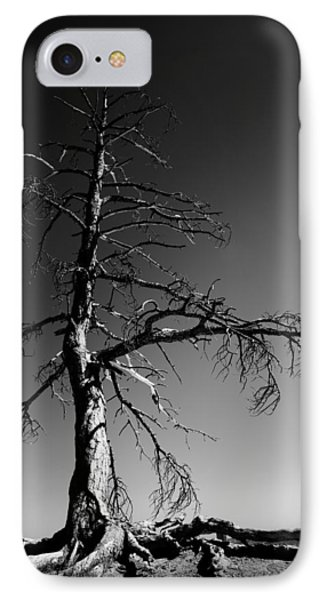 Survival Tree Phone Case by Chad Dutson
