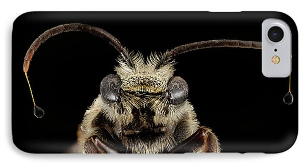Sweat Bee IPhone Case by Us Geological Survey