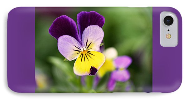 Sweet Violet IPhone Case by Rona Black