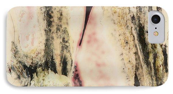Sx Landscape V  C1978 Phone Case by Paul Ashby